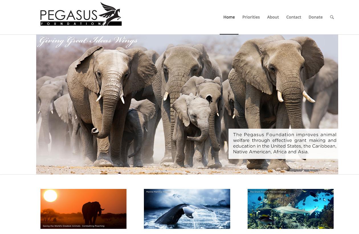 pegasusfoundation.org